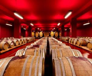 Cantina Termeno (Tramin) barricaia vini altoatesini